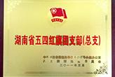 湖南省五四红旗团支部(总支)