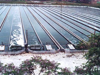 雷竞技下载集团南京开源微藻生物工程有限公司